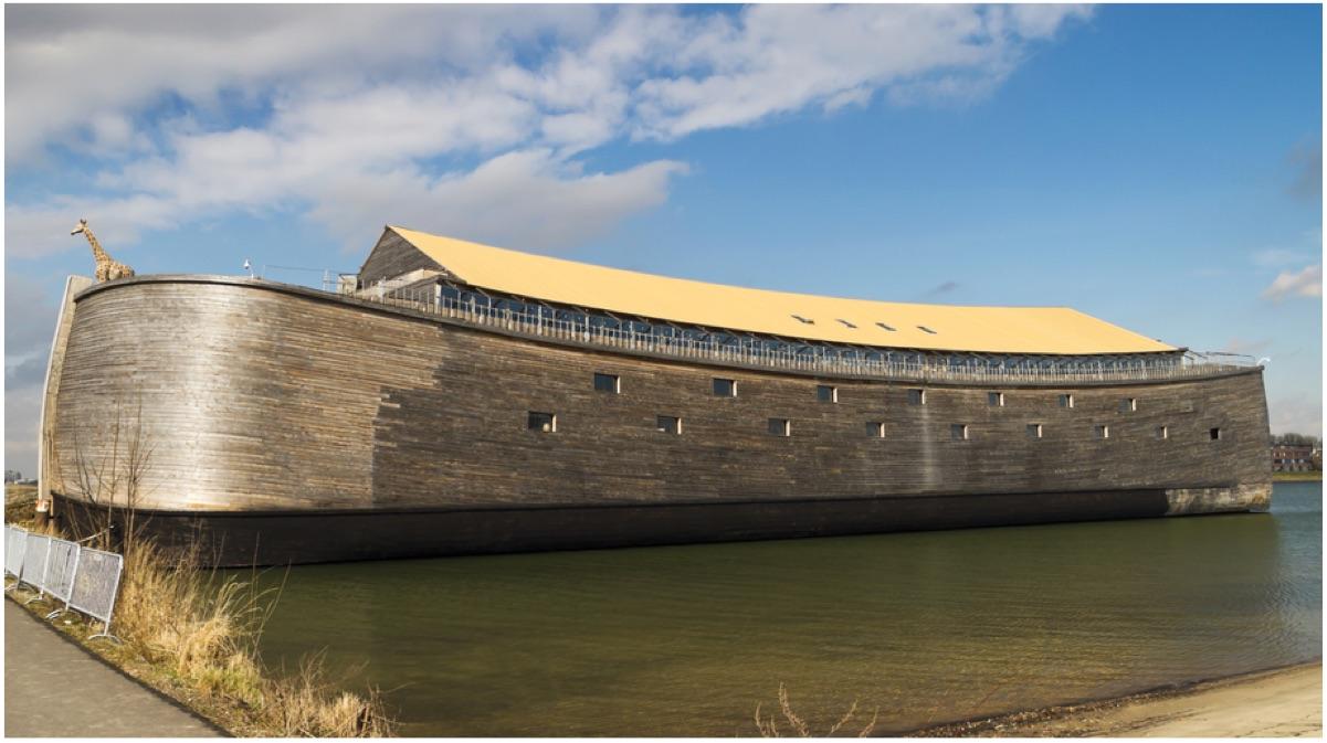 portada arca