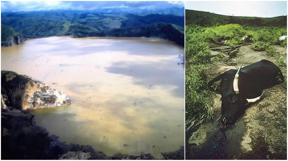 portada lago