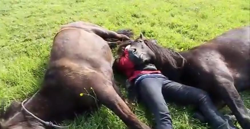 chica-caballos-tumbada