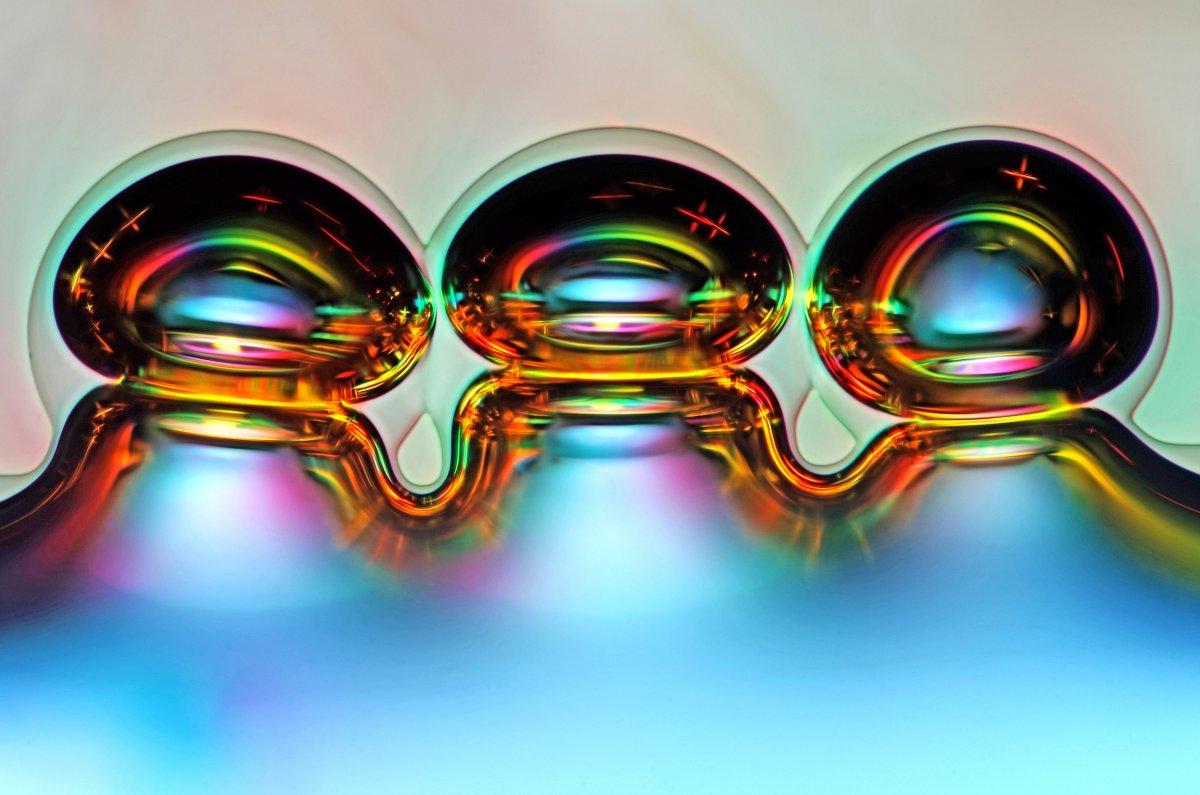 fotos microscopicas 53