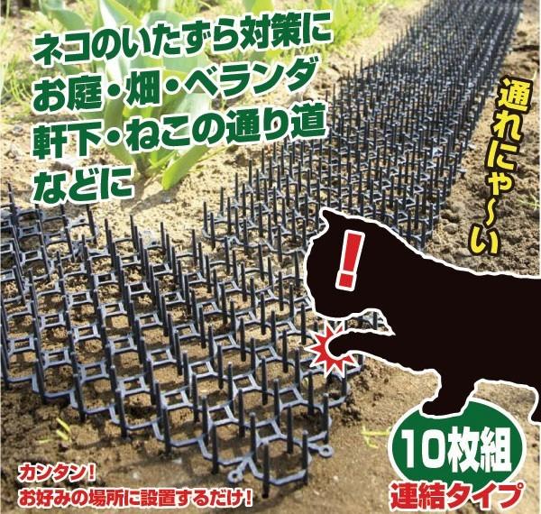 invento-gatos7