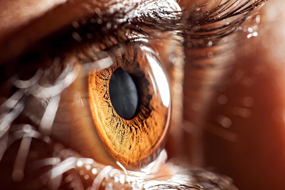 ojo vision