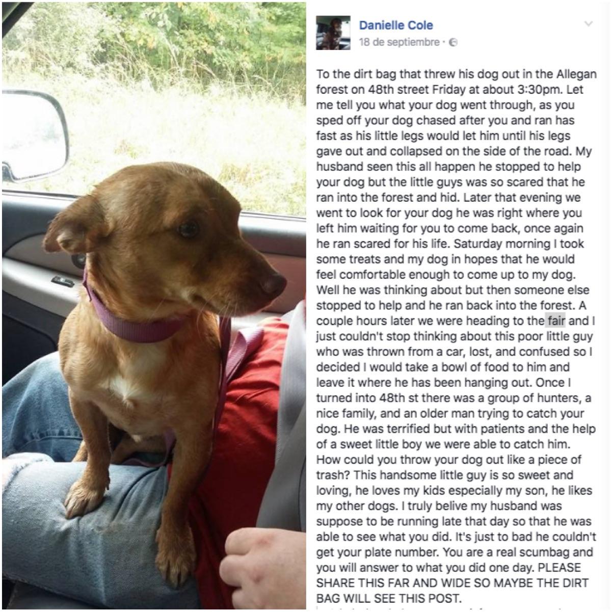 Danielle Cole - Facebook