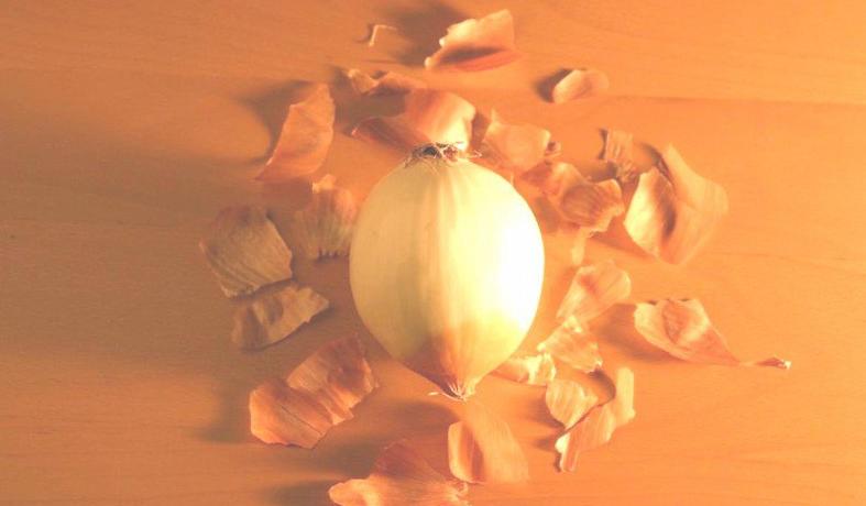 piel-cebollas