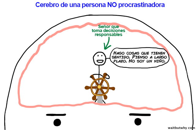 NP brain