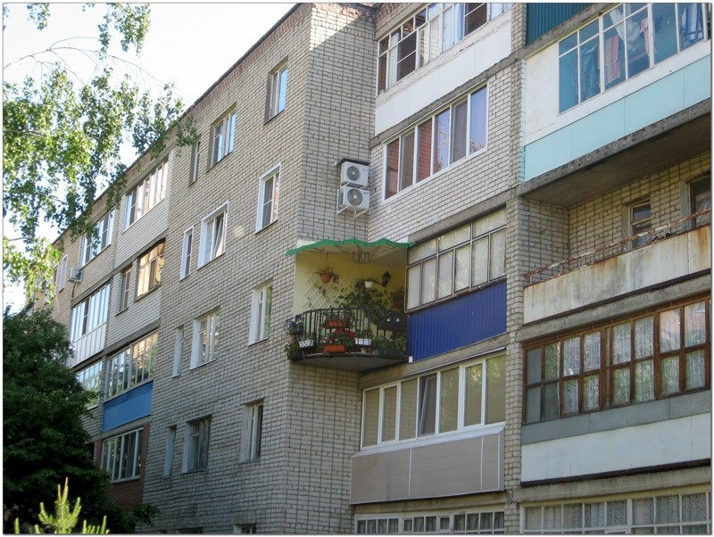 ognov.ru