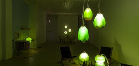 bioluminiscencia 2