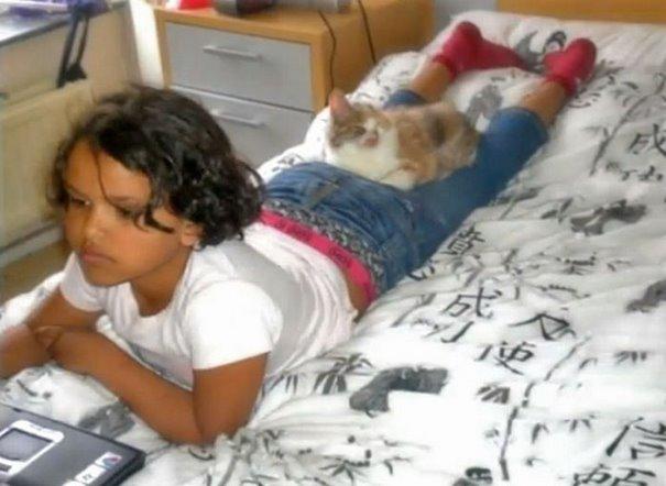 chica salva gato desfigurado en estambul y lo convierte en su mejor amigo 7