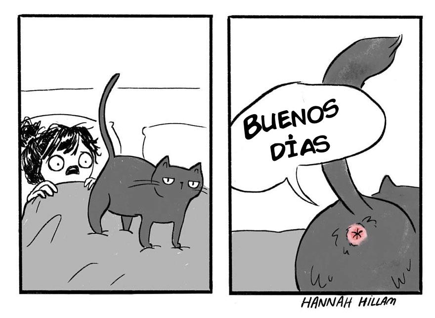 comics de gatos de Hannah Hillam 4