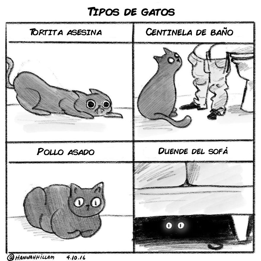 comics de gatos de Hannah Hillam 6