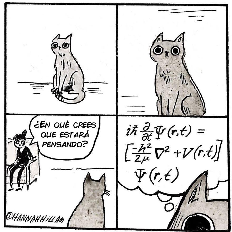 comics de gatos de Hannah Hillam 8