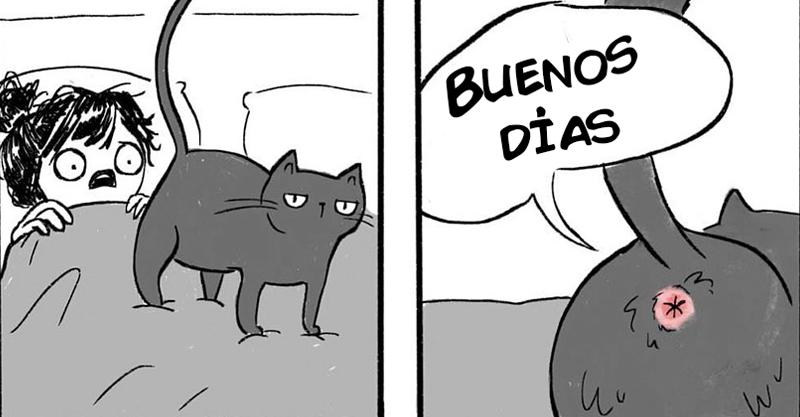 comics-gatos