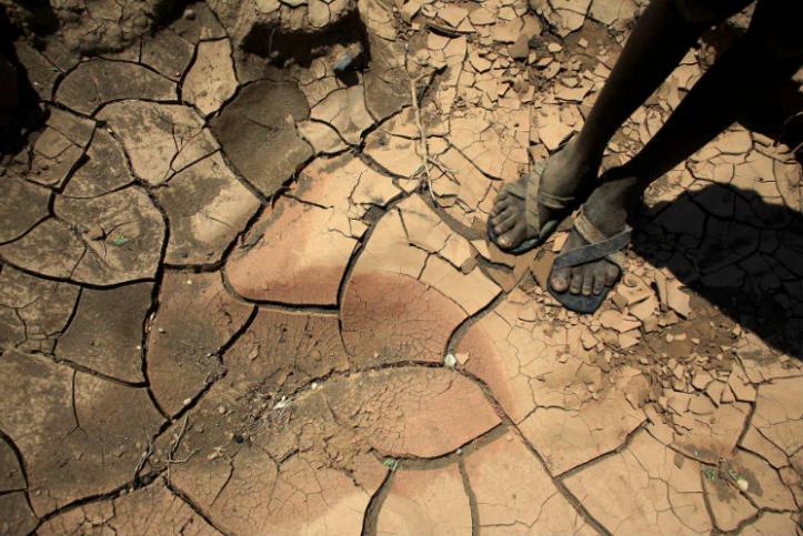 imagenes de 2016 sobre el cambio climatico 1