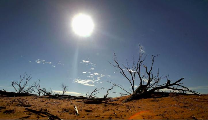 imagenes de 2016 sobre el cambio climatico 10