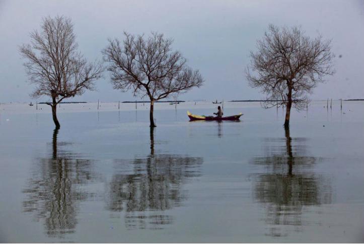 imagenes de 2016 sobre el cambio climatico 2