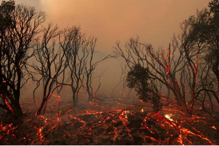 imagenes de 2016 sobre el cambio climatico 4