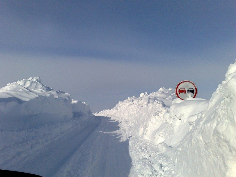 nolrisk nieve 11