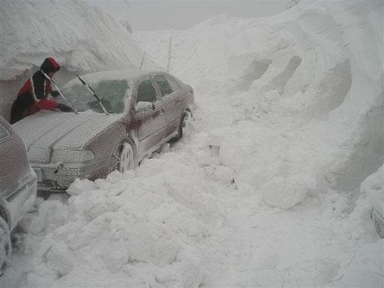 nolrisk nieve 12