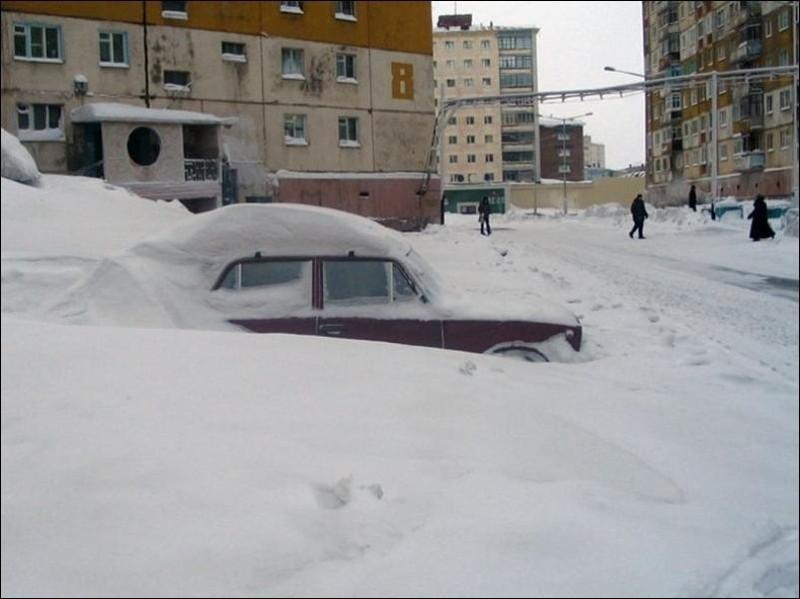 nolrisk nieve 13