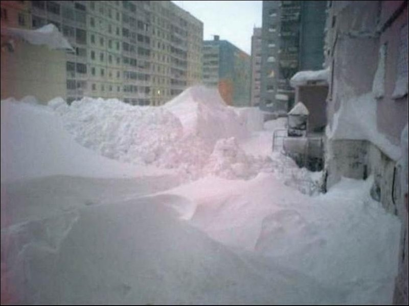 nolrisk nieve 14