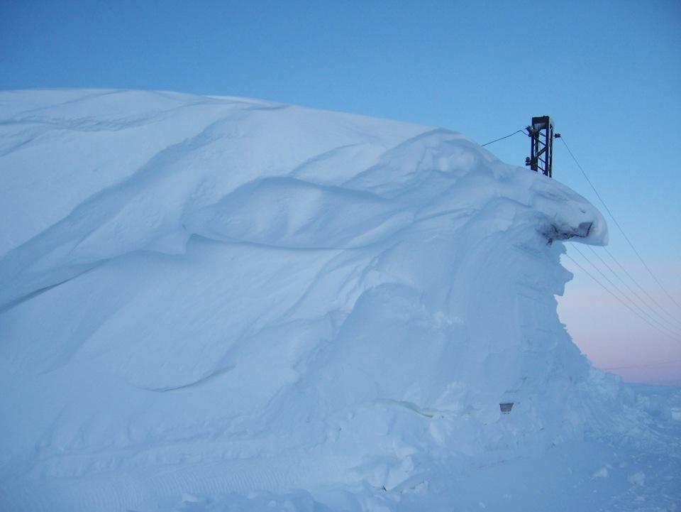 nolrisk nieve 22