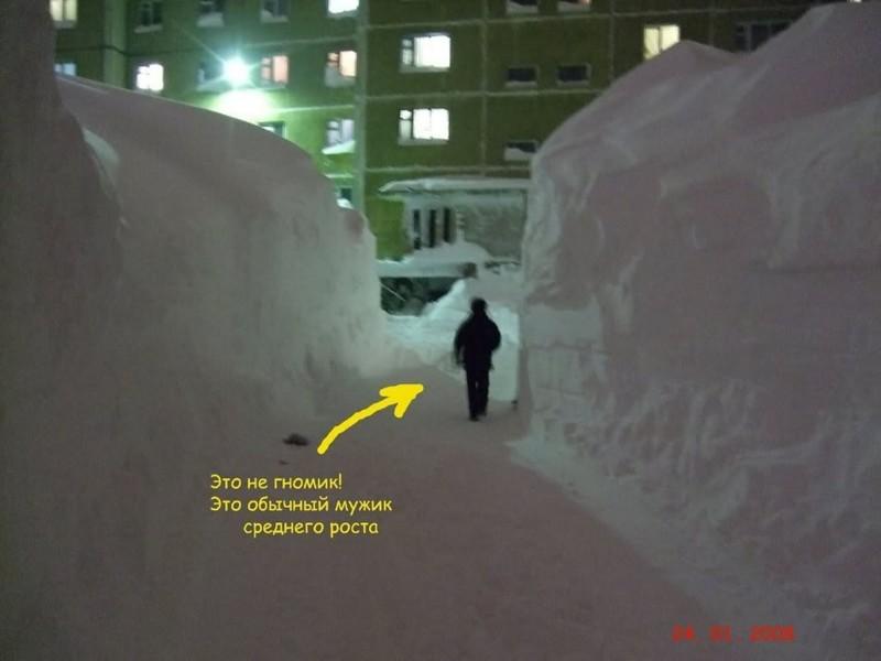 nolrisk nieve 4