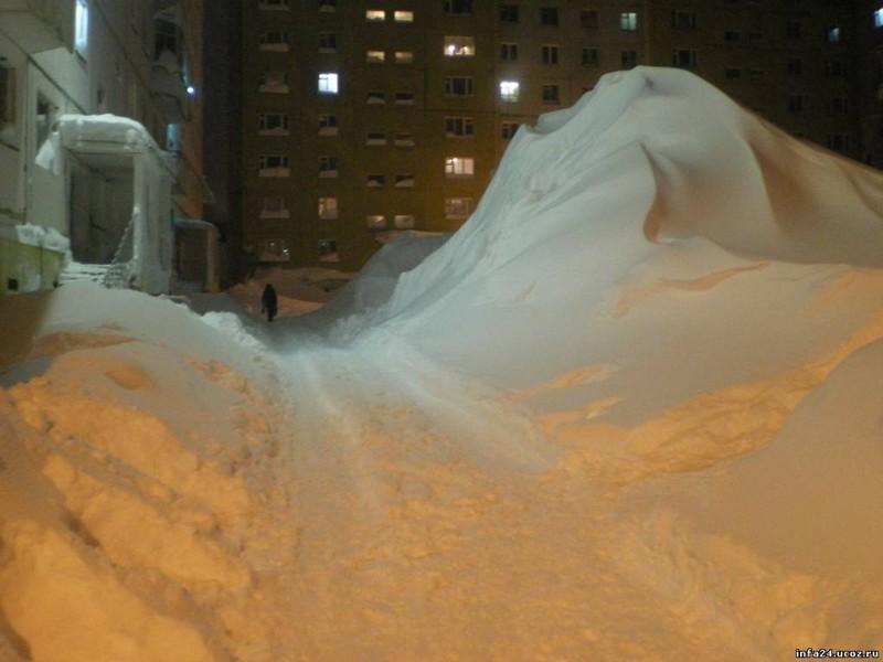 nolrisk nieve 7