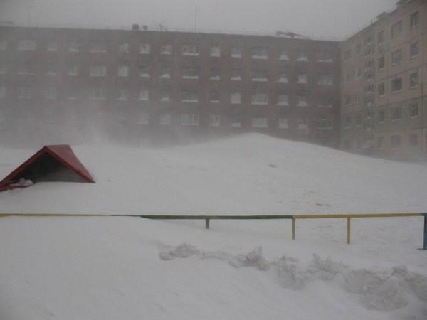 nolrisk nieve 8