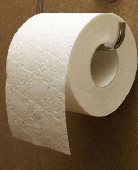 porque poner papel higienico en la taza del wc no es tan bueno como creemos 2
