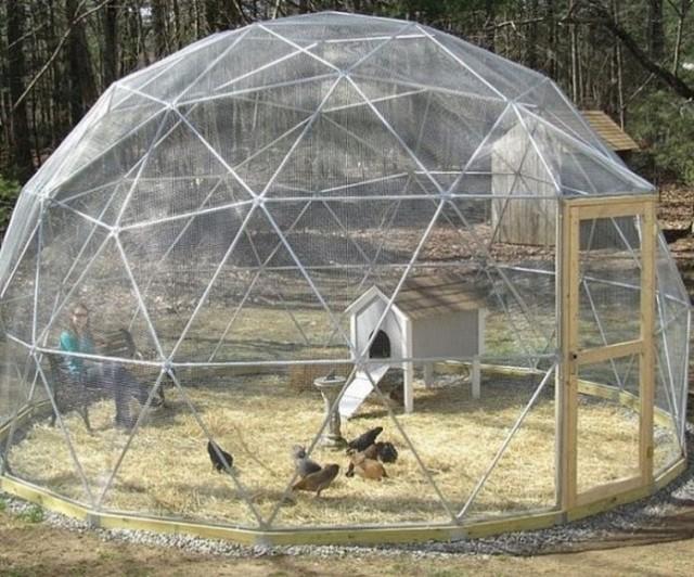 construir-gallinero-jardin7