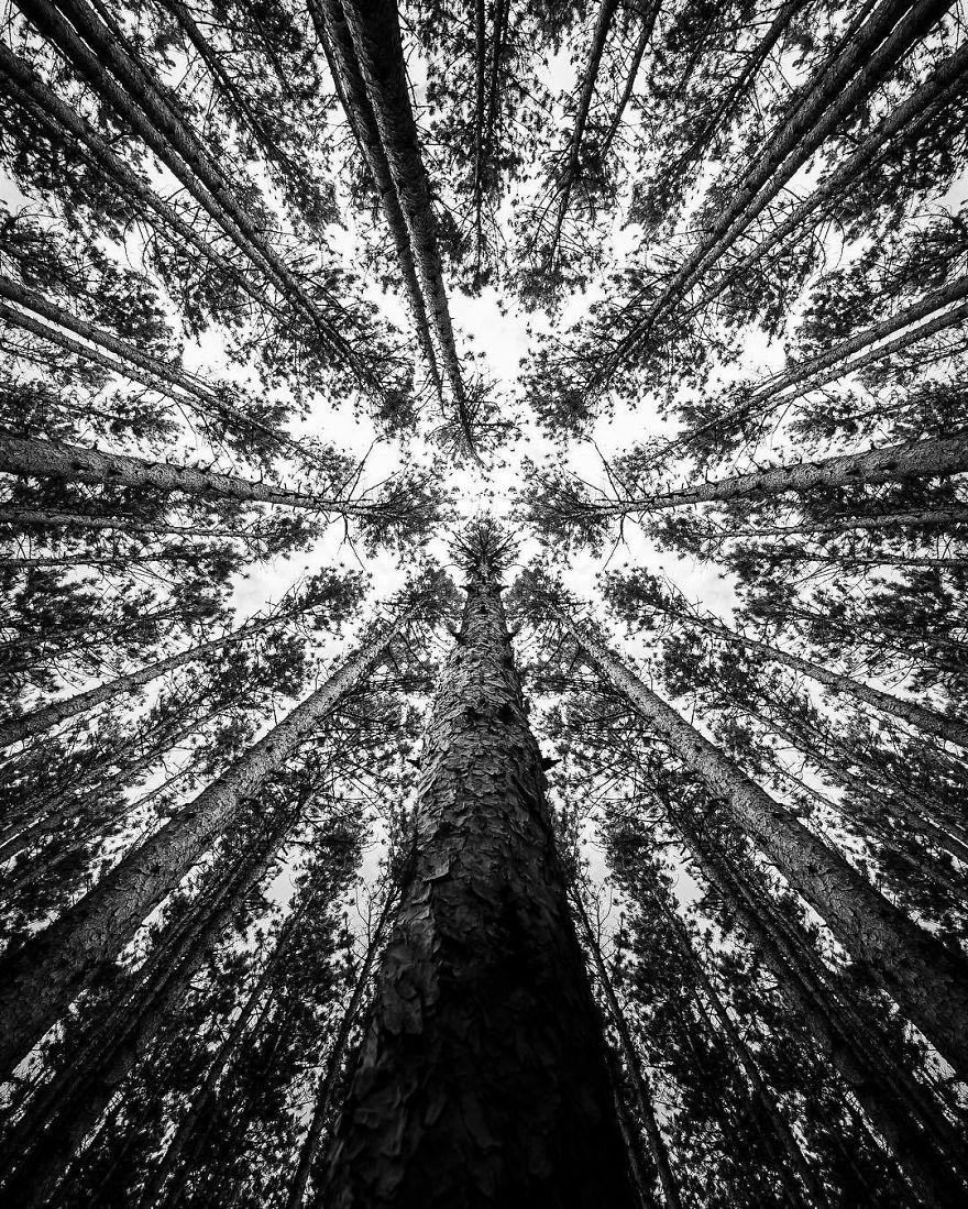 fotografo-blanco-y-negro-15
