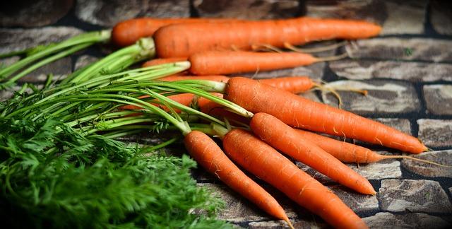 zanahoria-ahora-1