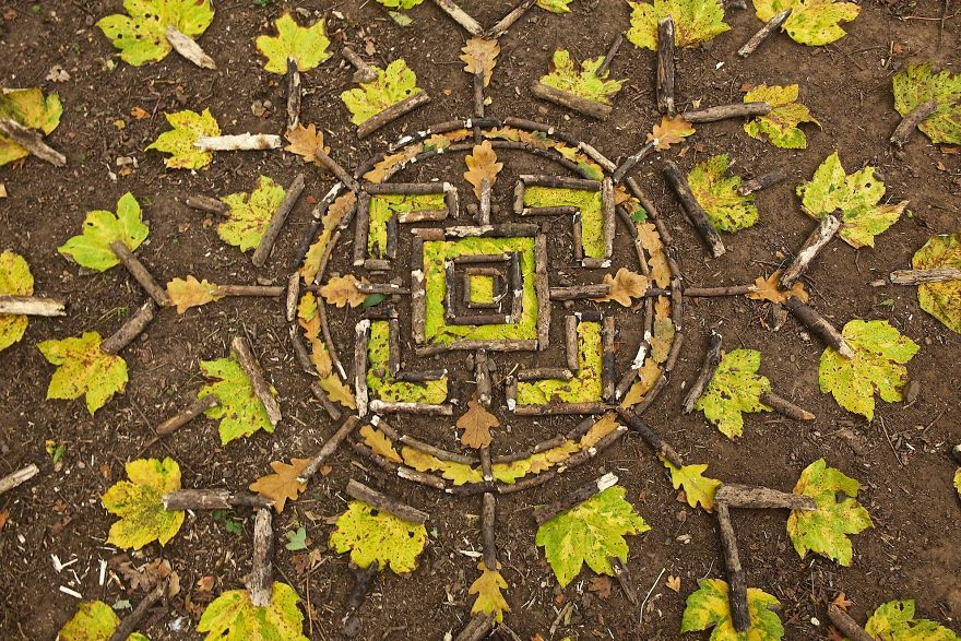 Patrón de hojas