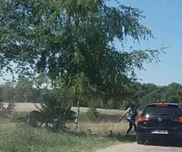 familia atacada en zoológico