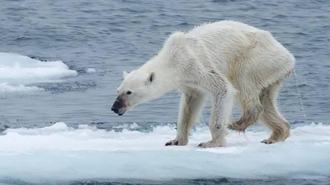 introduccion a calentamiento global