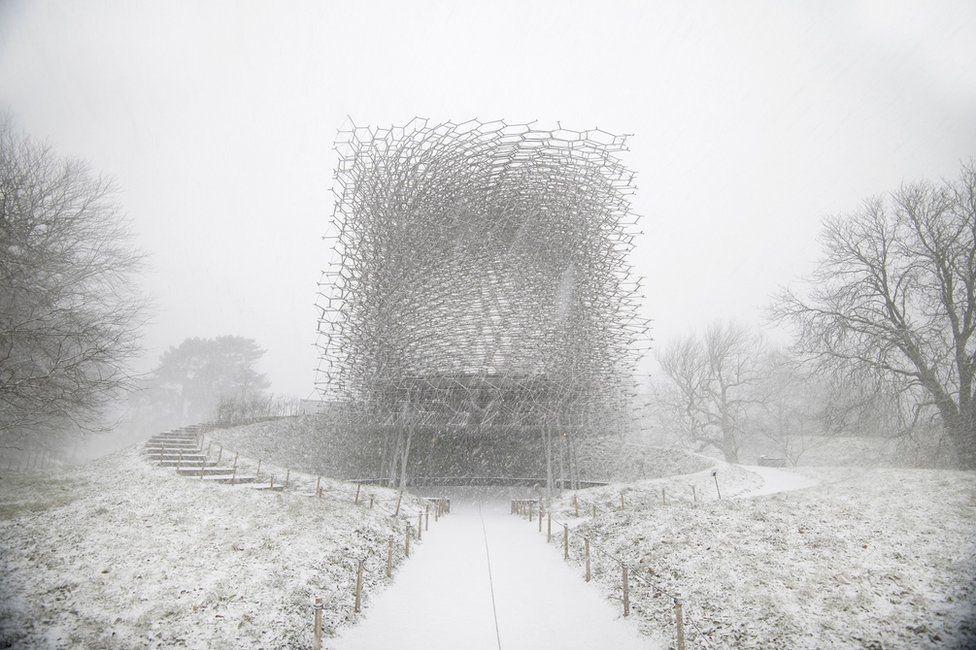 Concurso foto arquitectura. La Colmena vista desde fuera, en el jardín botánico real (Londres)