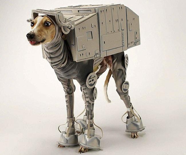 disfraces de hallowen para mascotas