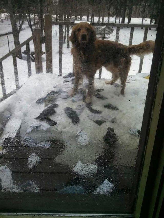Al pasar la nieve aparecen los calcetines
