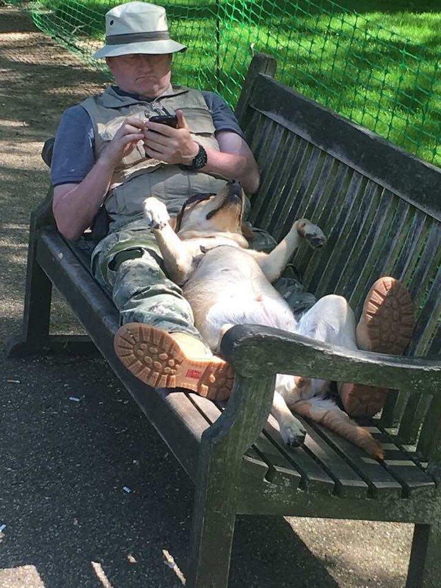 Hombre relajado con su perro