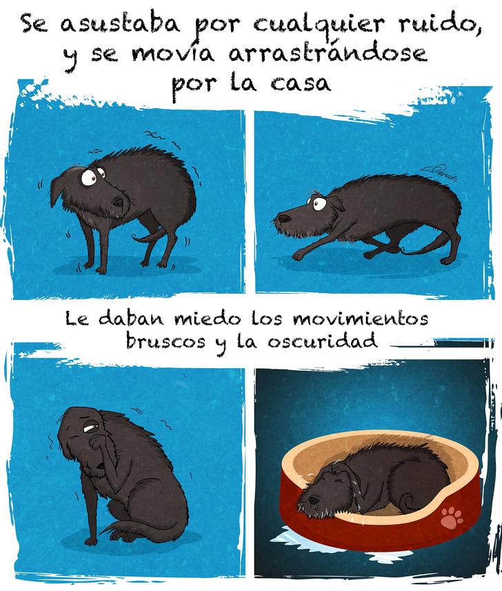 comic adopcion de animales 2
