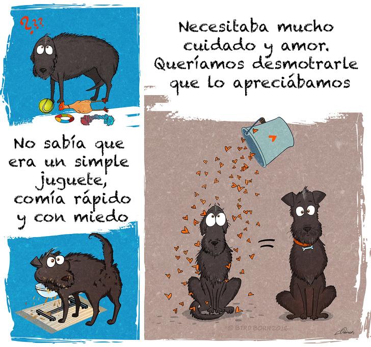 comic adopcion de animales 3