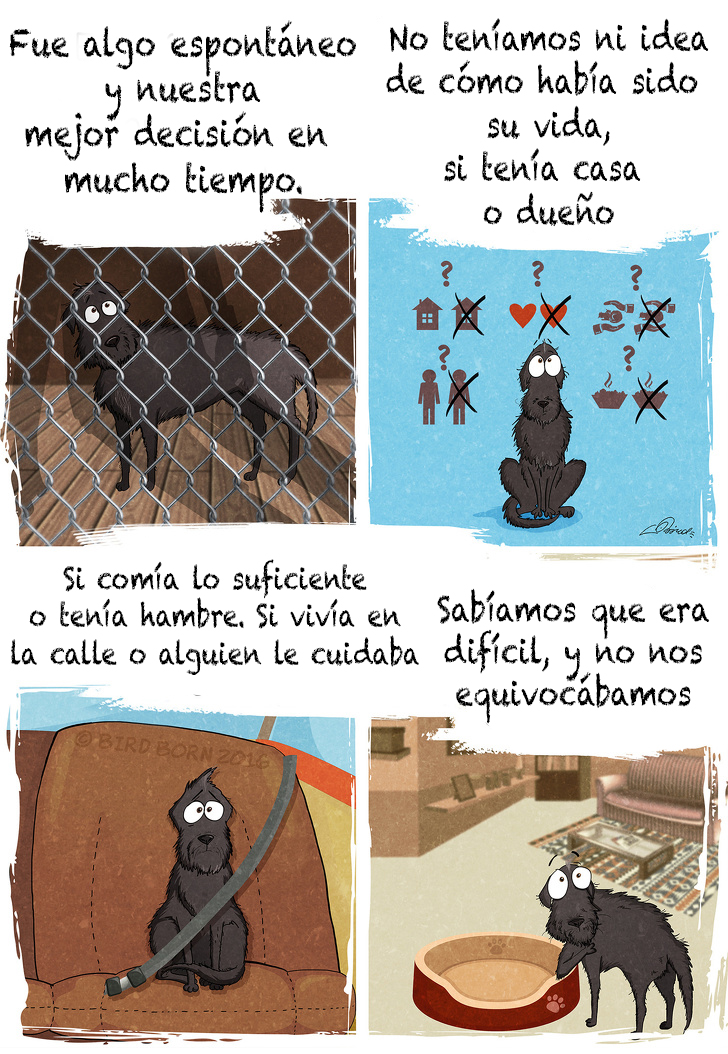 comic adopcion de animales 1