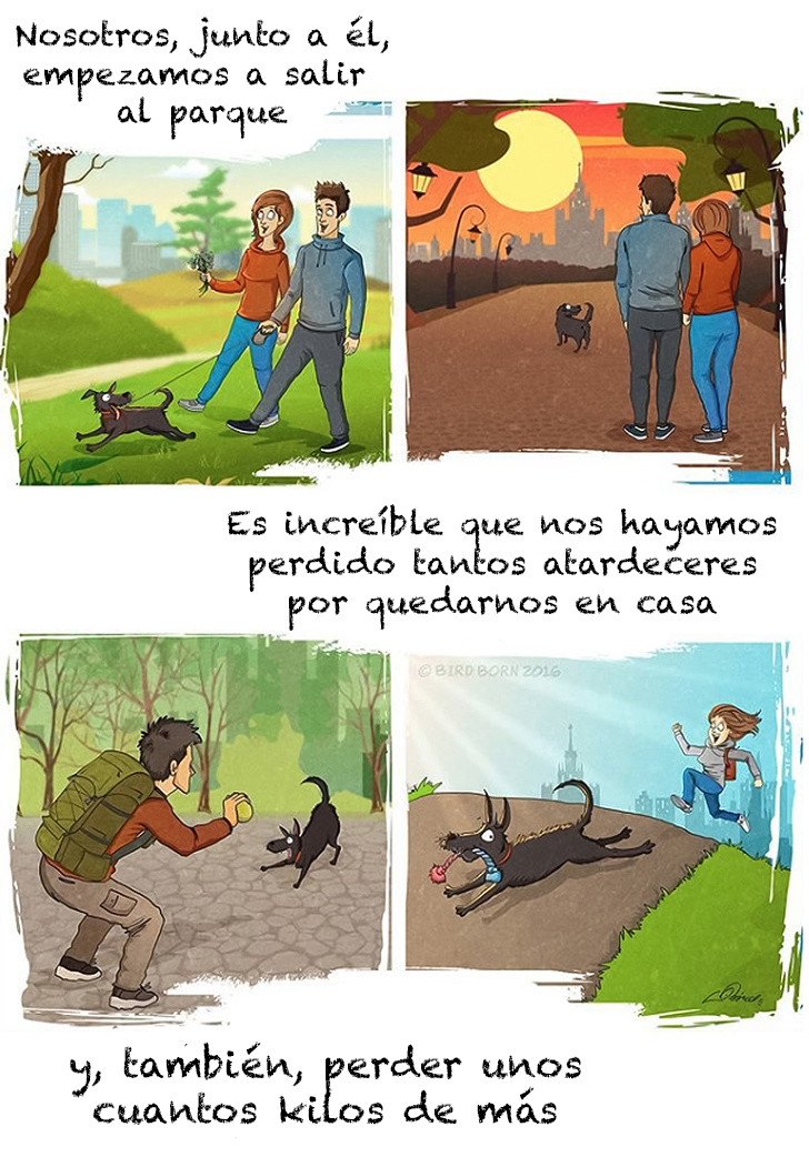 comic adopcion de animales 5