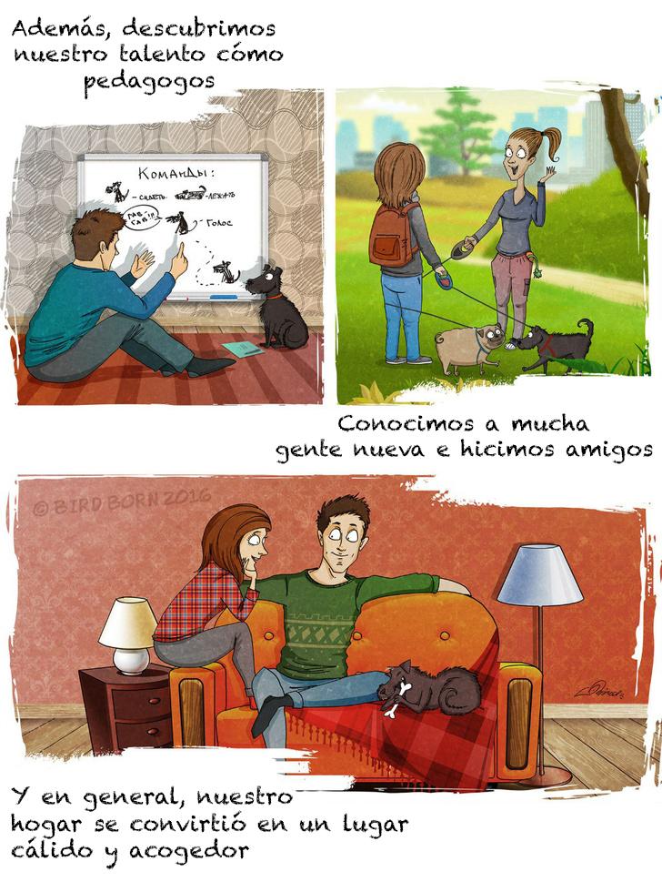 comic adopcion de animales 6