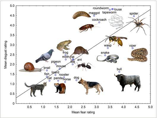 fobias animales