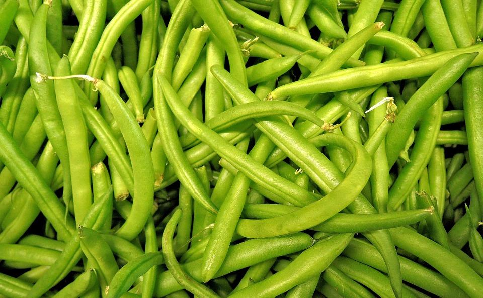 Judías verdes nutrición
