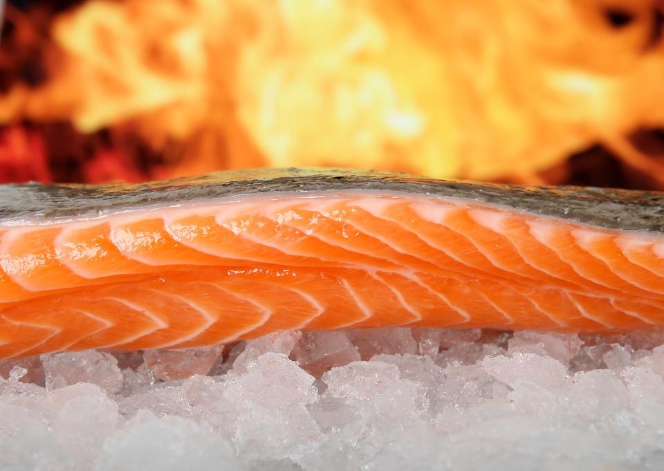 salmon alimento pescado