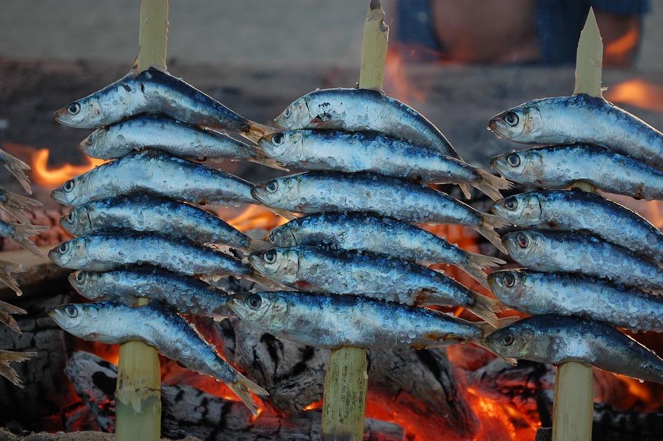 espetos sardinas brasas