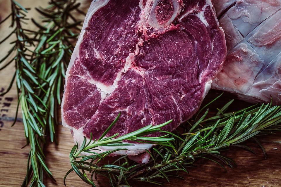 carne proteína nutrición