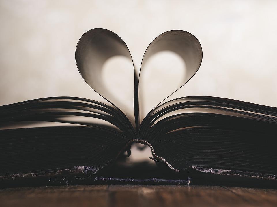 libro educación emocional sentimientos lectura sistema educativo